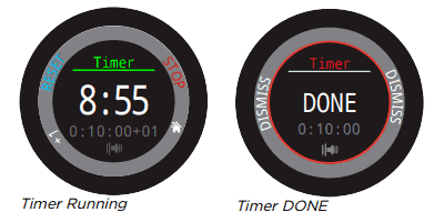 Teric Dive Computer Timer