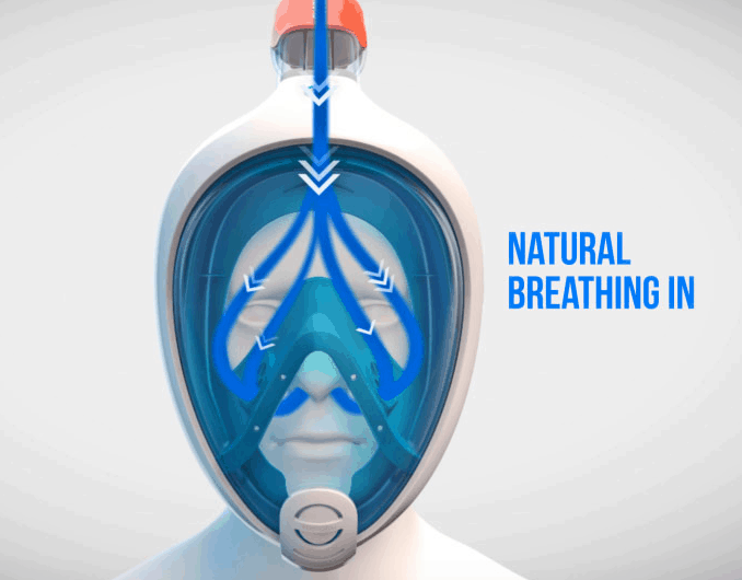 How does a full face mask and dry top snorkel work?